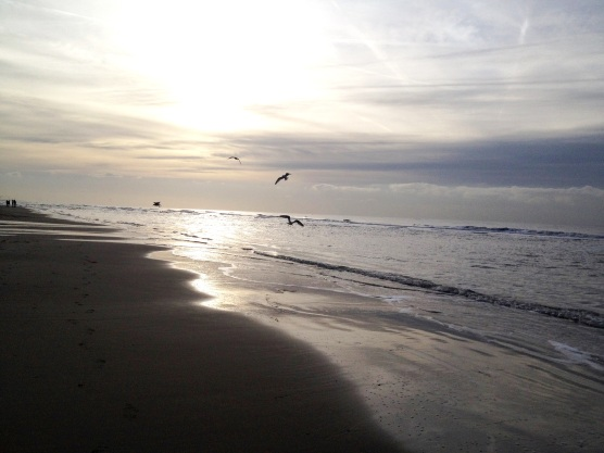Egmond_Beach1