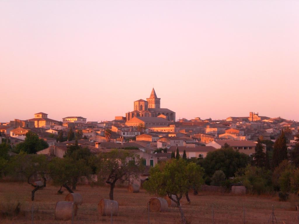 7 Blicke auf …Mallorca
