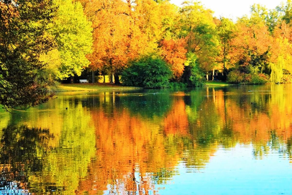Wochenend-Tipps 21.-23.10.2016 (Rhein-Neckar-Region)