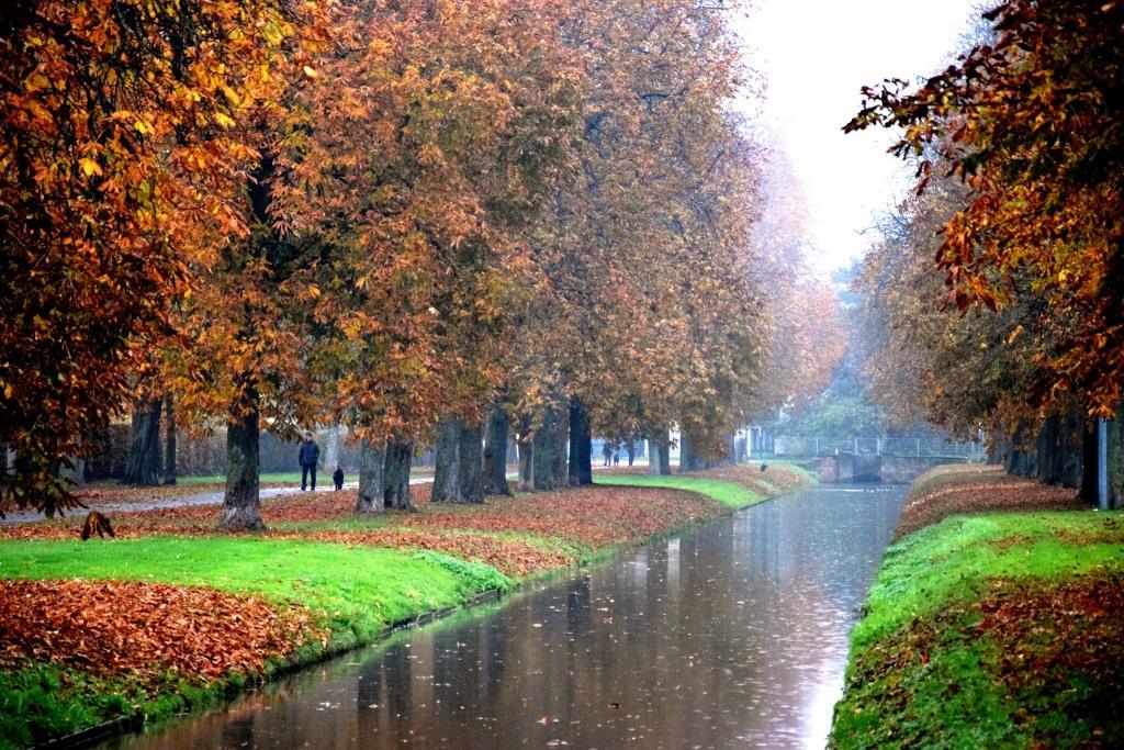 Wochenend-Tipps 17. – 20.11.2016 (Rhein-Neckar-Region)