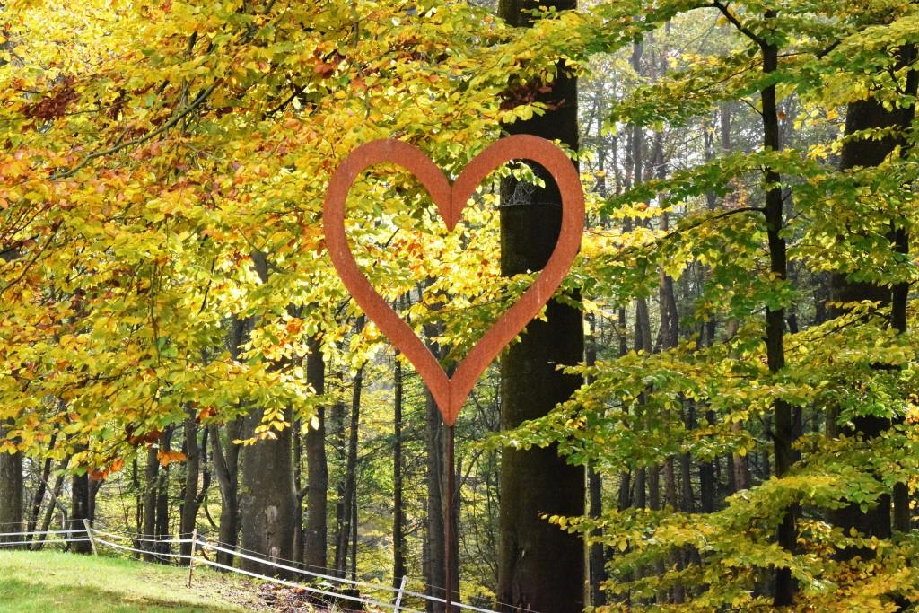 Wochenend-Tipps 10.-13.11.2016 (Rhein-Neckar-Region)