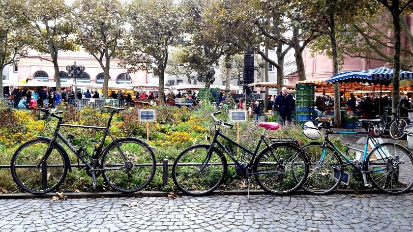 Unterfreundenblog Mainz Wochenmarkt Marktfrühstück