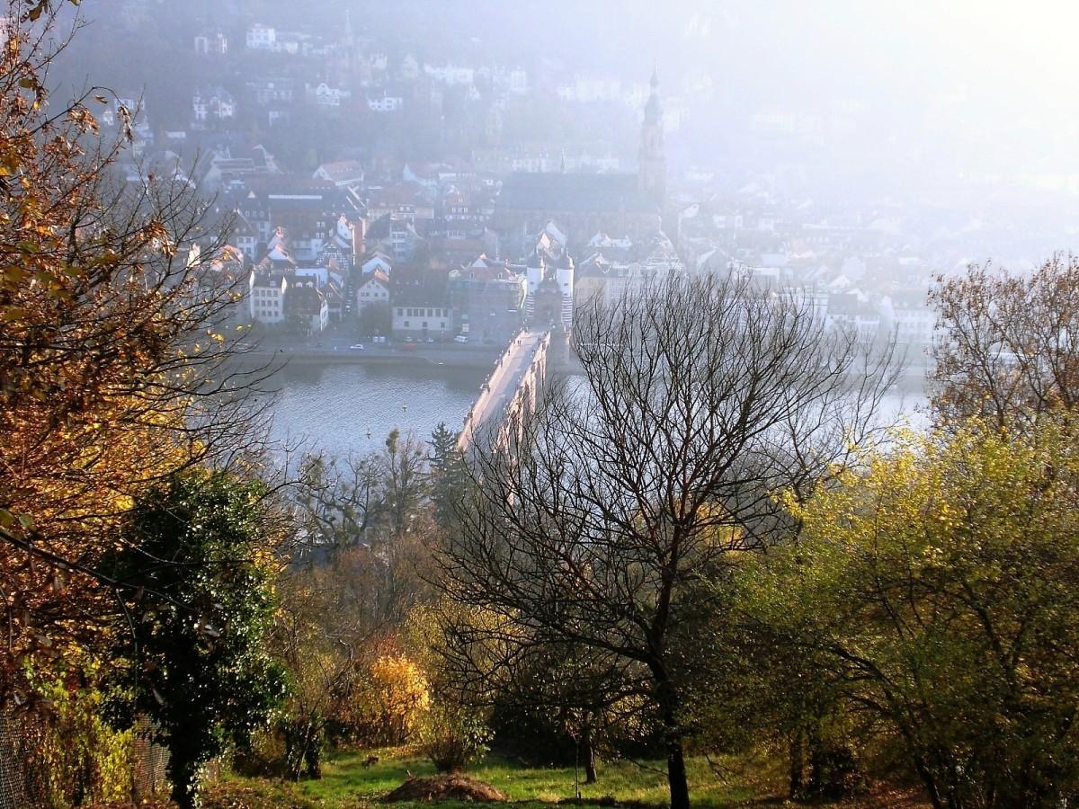Wochenend-Tipps 09.-12.02. (Rhein-Neckar-Region)