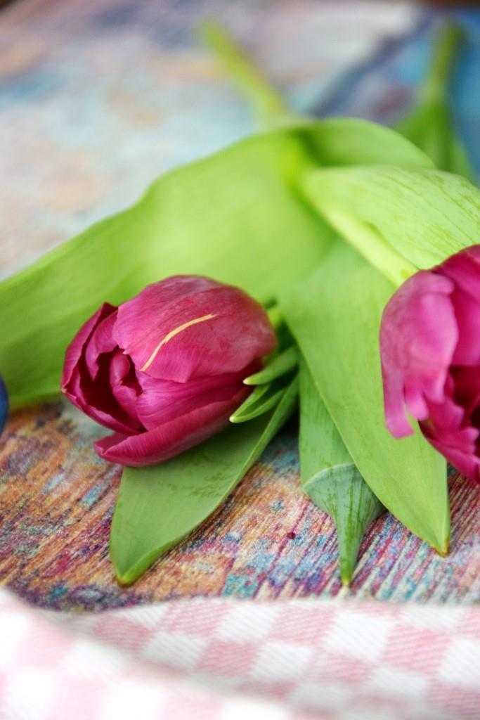 Unterfreundenblog Valentinstag Tulpen Valentines Tulips