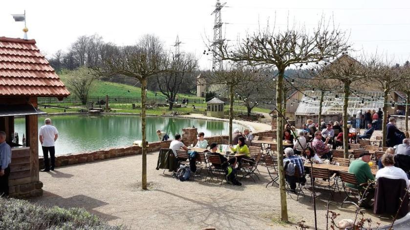 Seele baumeln lassen im Landgut Lingental, Leimen - Biergarten mit Seeblick