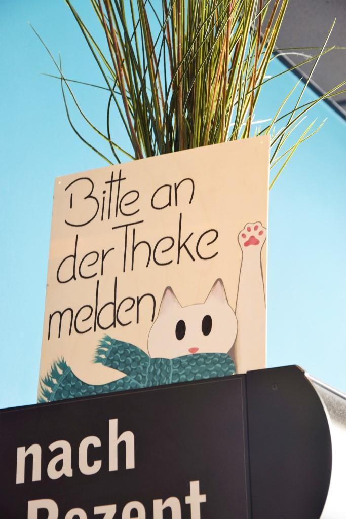 Daumen, äh Pfoten hoch fürs Cats Café in Karlsruhe