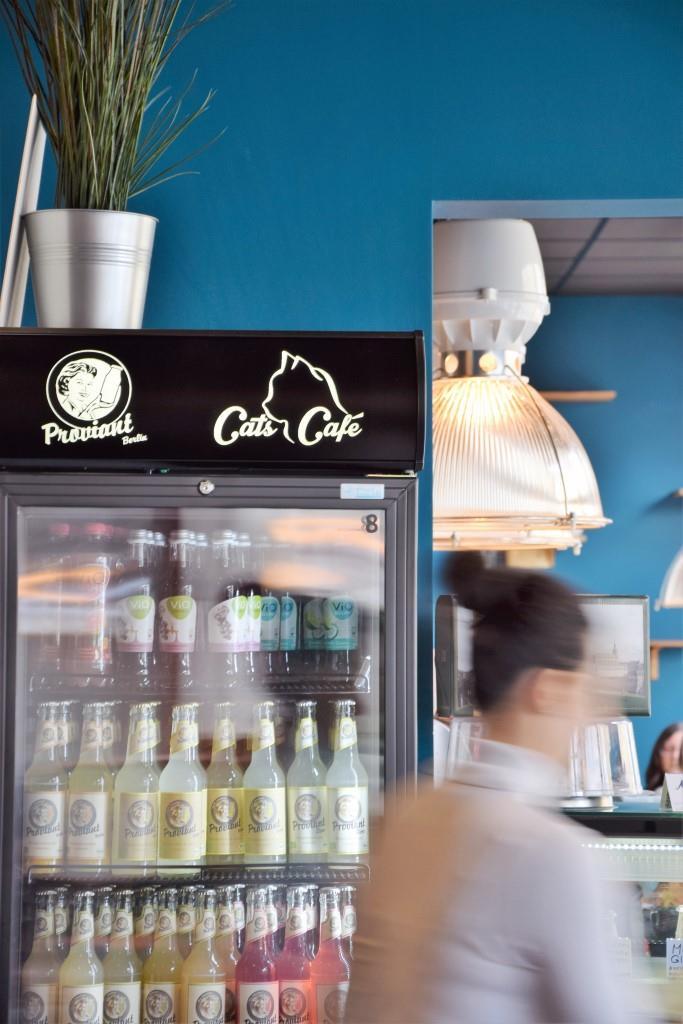Flotter und sehr netter Service im Cats Café Karlsruhe