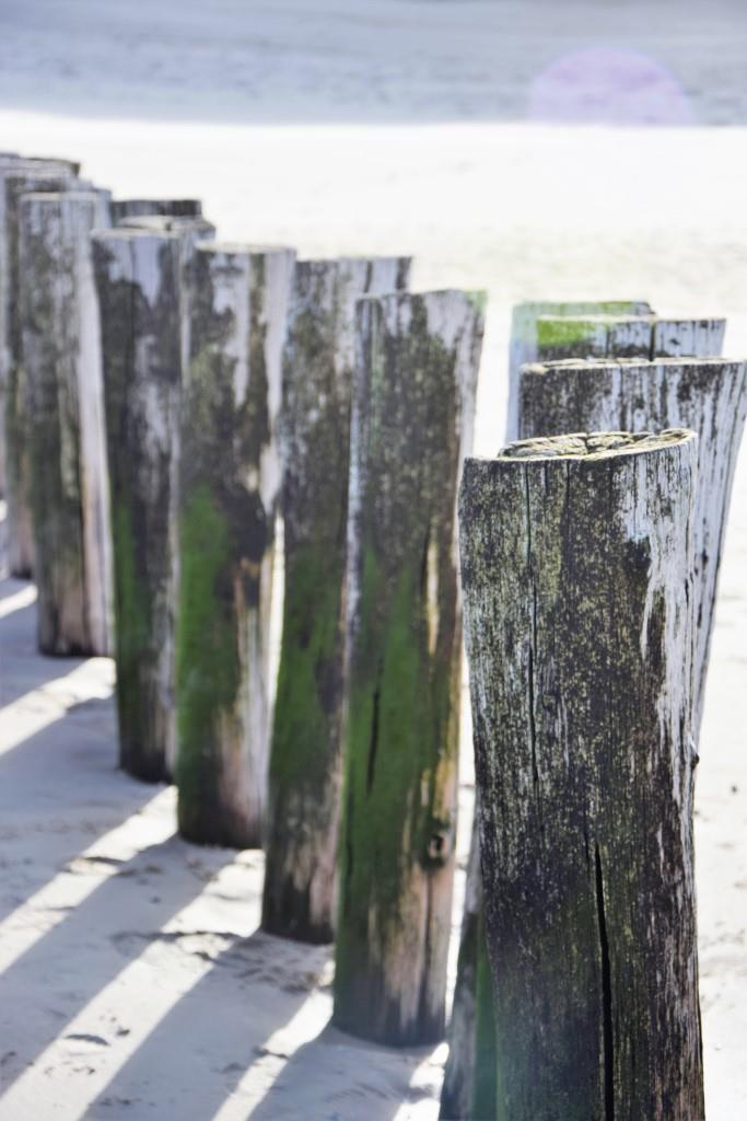 Typisch Zeeland - Buhnen aus Holz am Strand