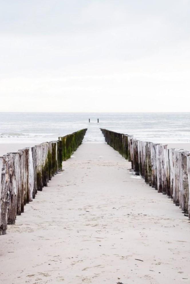 Typisch Zeeland - Buhnen am Meer