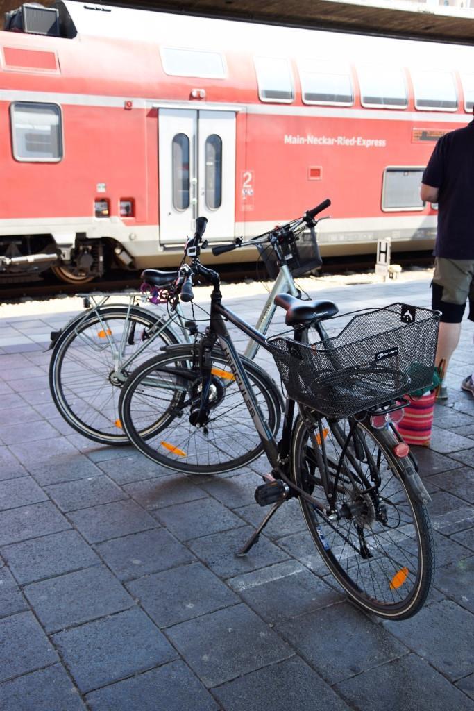 Die Bahn bringt uns zum Startpunkt nach Hoffenheim