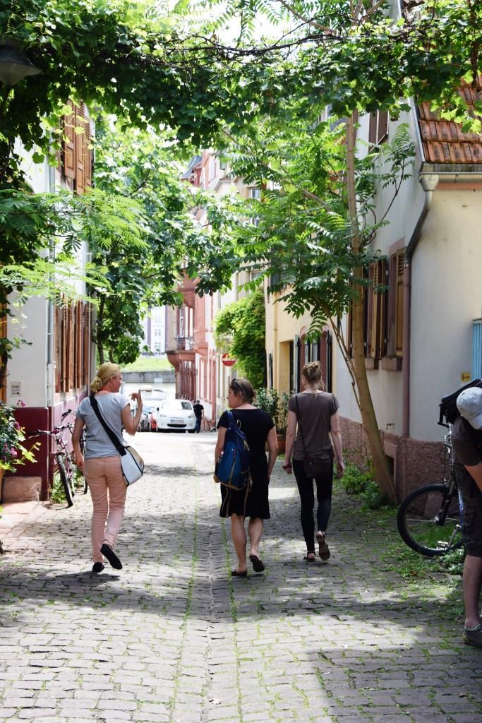 Malerische Gässchen in Heidelberg Neuenheim
