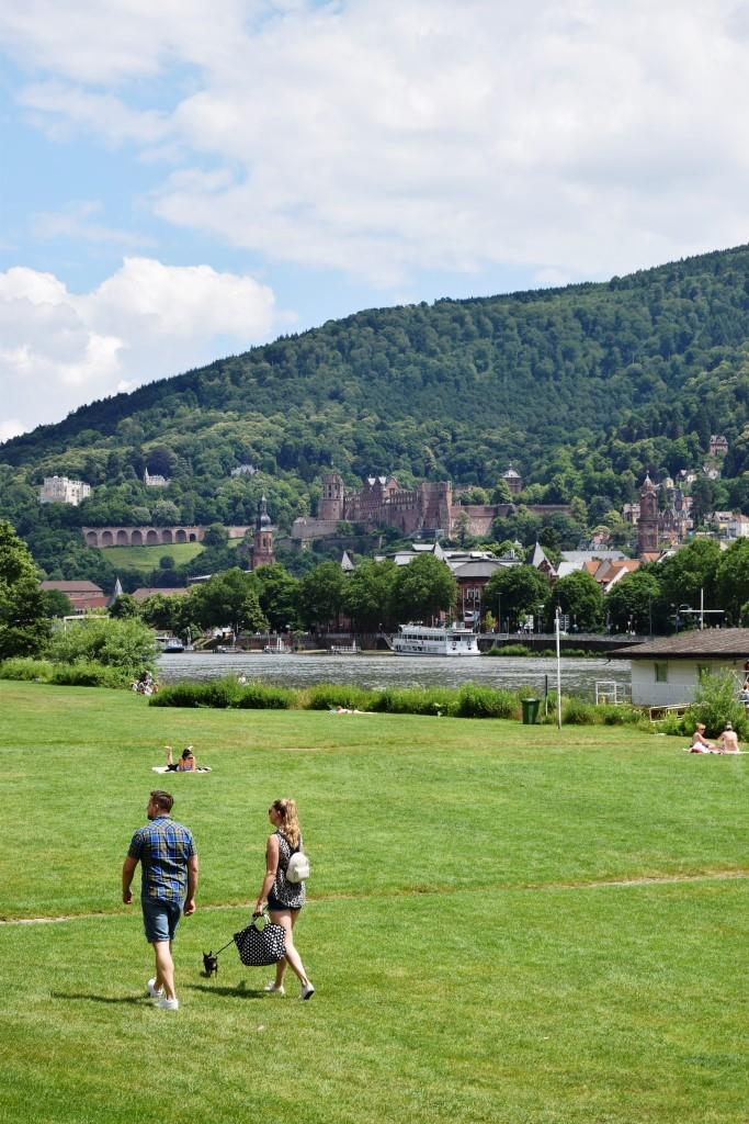 ... und ab auf die Neckarwiese zum Picknick mit Schlossblick