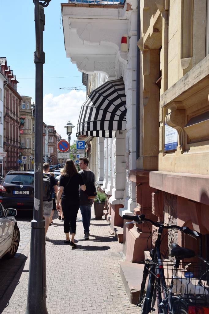 Spaziergang durch das sommerliche Heidelberg-Neuenheim