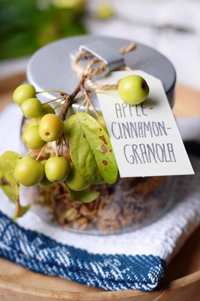 Apple Cinnamon Granola - ab ins Glas und an liebe Freunde verschenkt