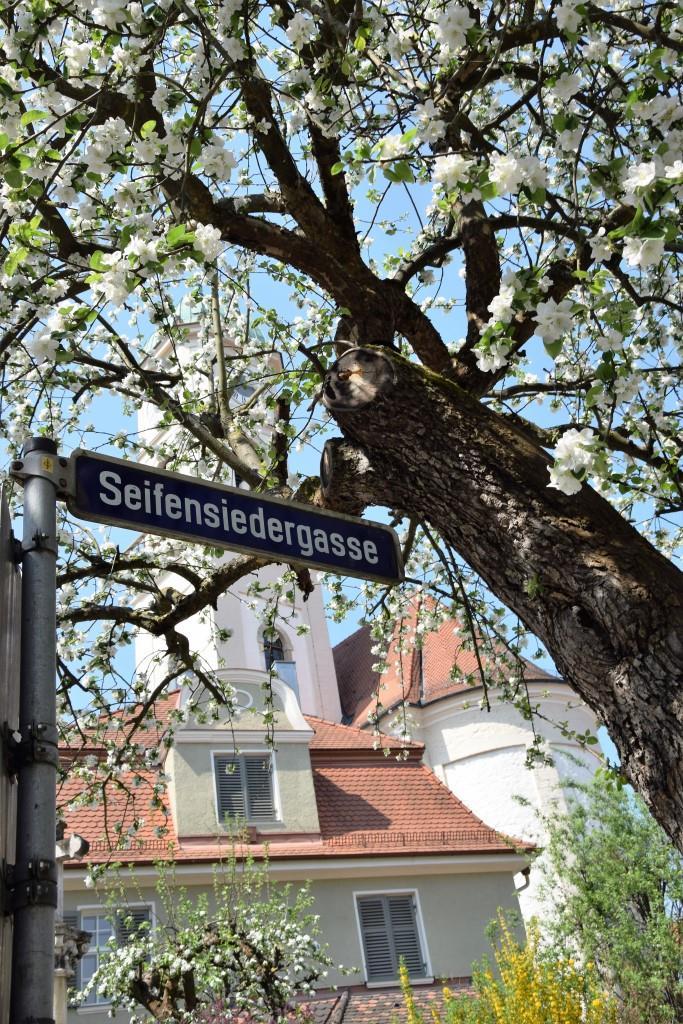 Hach, Du schönes Regensburg!