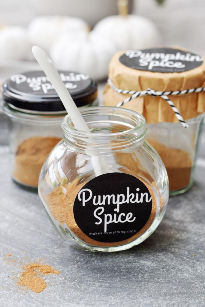 Pumpkin Spice makes everything nice - und ist so schnell und einfach selbst gemacht!