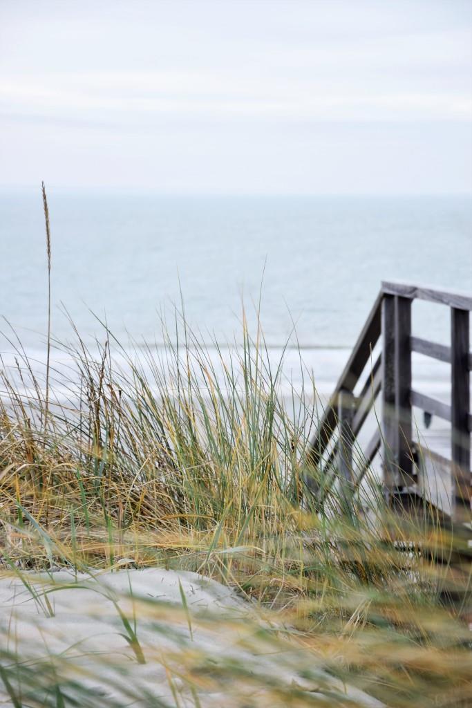 #Beachvibes Dünen und Meer in Zeeland