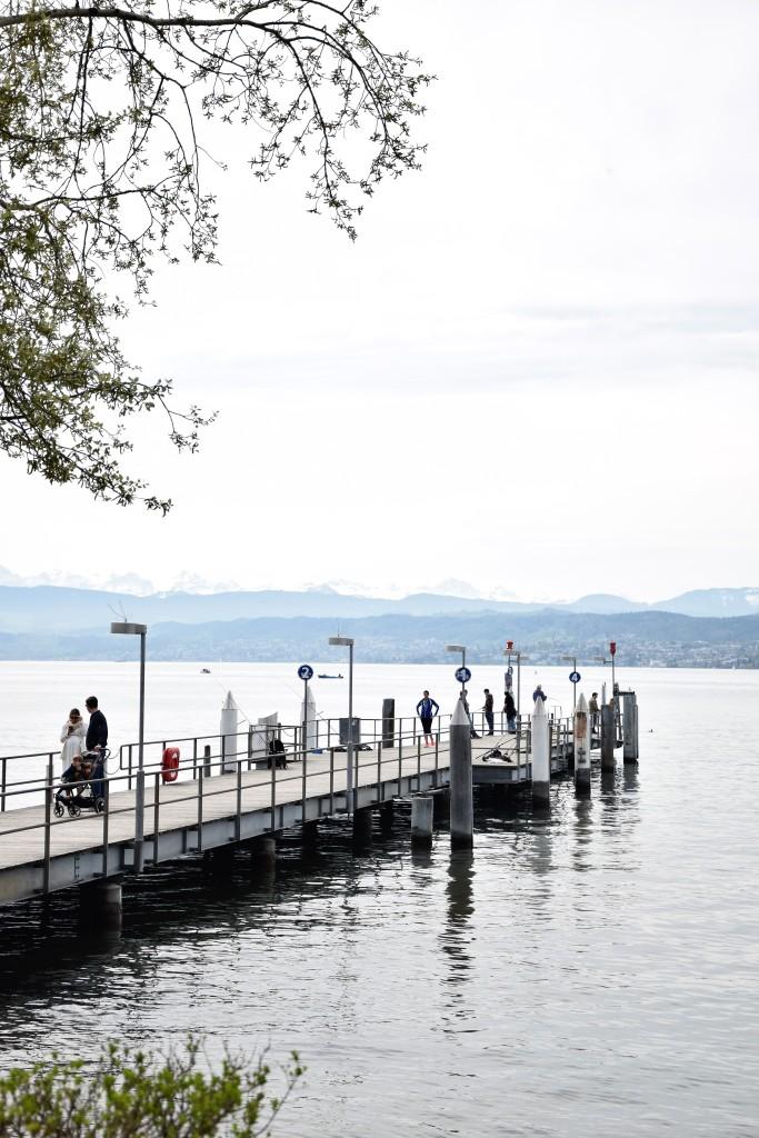 Zürich See Berge