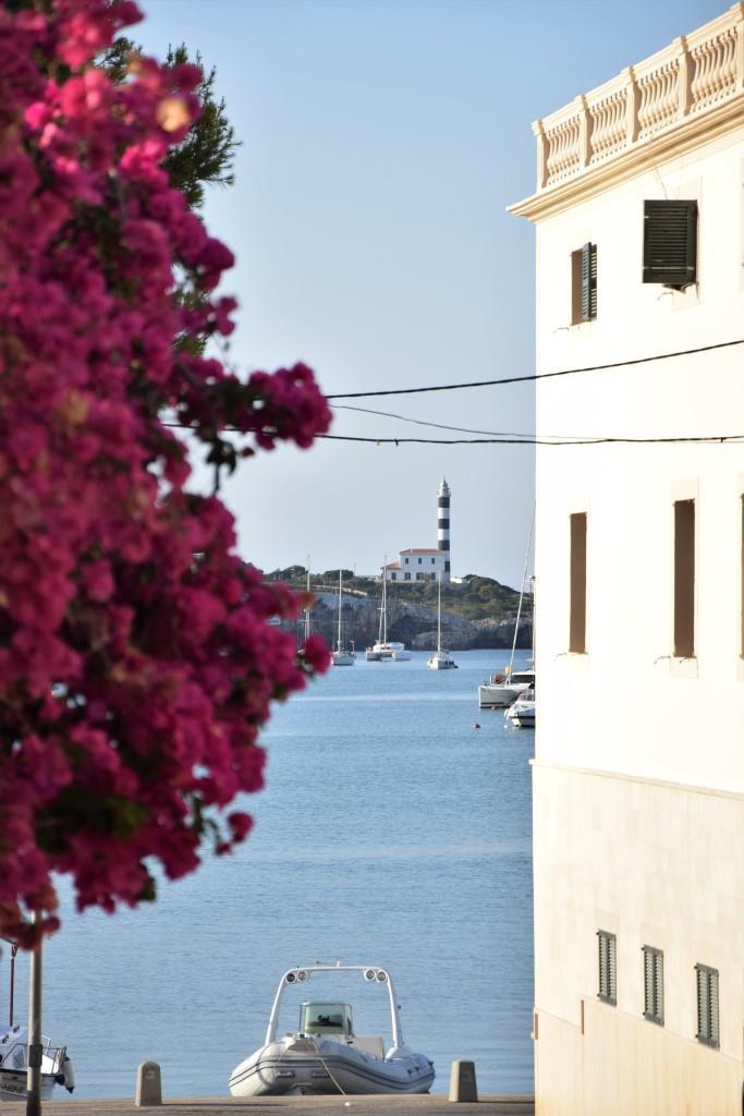 Bougainvillea Mallorca Portocolom