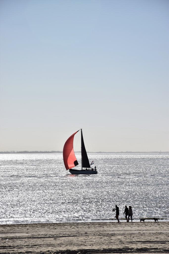 Segeln Zeeland Strand