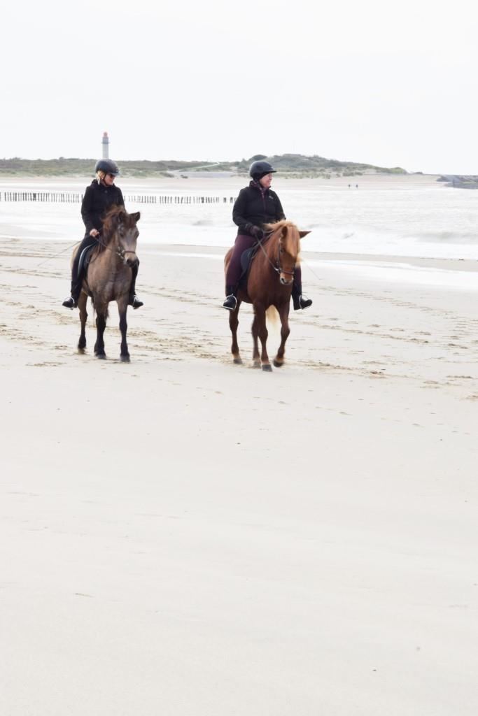 Reiten am Strand Zeeland
