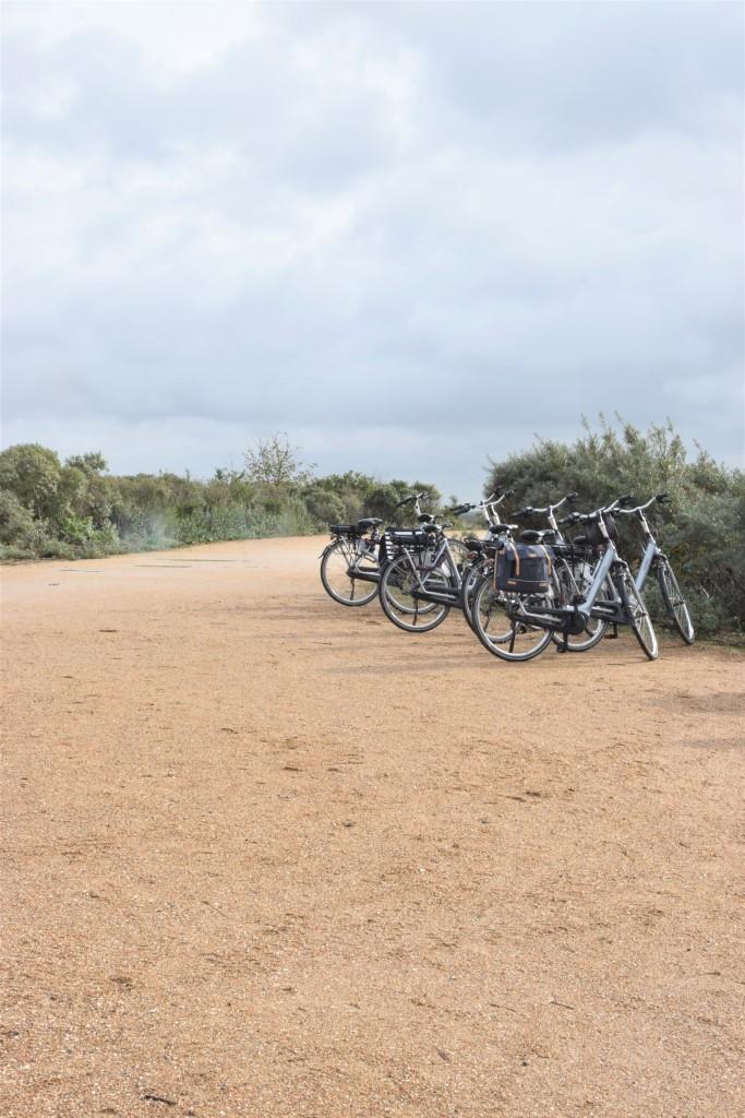 E-Bike-Tour Zeeland