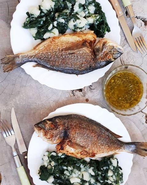 Frischer Fisch Slowenien