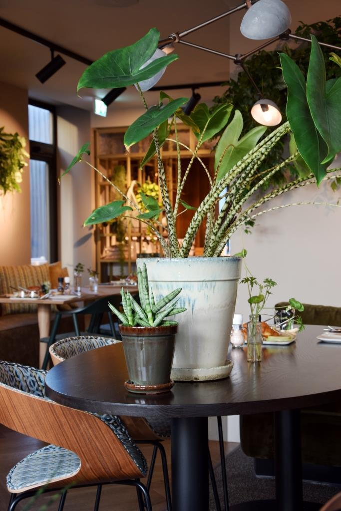 The green room restaurant middelburg