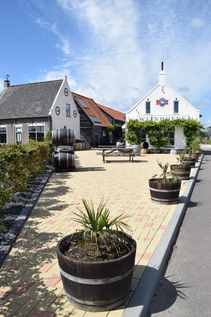 Weingut Zeeland Niederlande