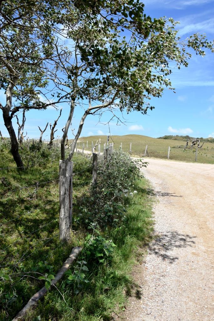 Natur Wandern Zeeland