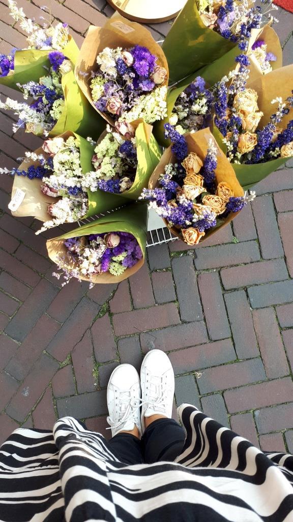 Trockenblumen Markt Middelburg