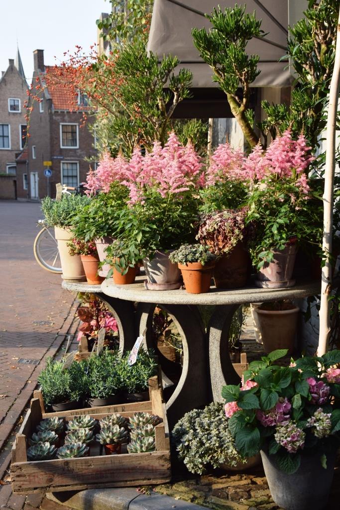 Blumen Middelburg Bloemen