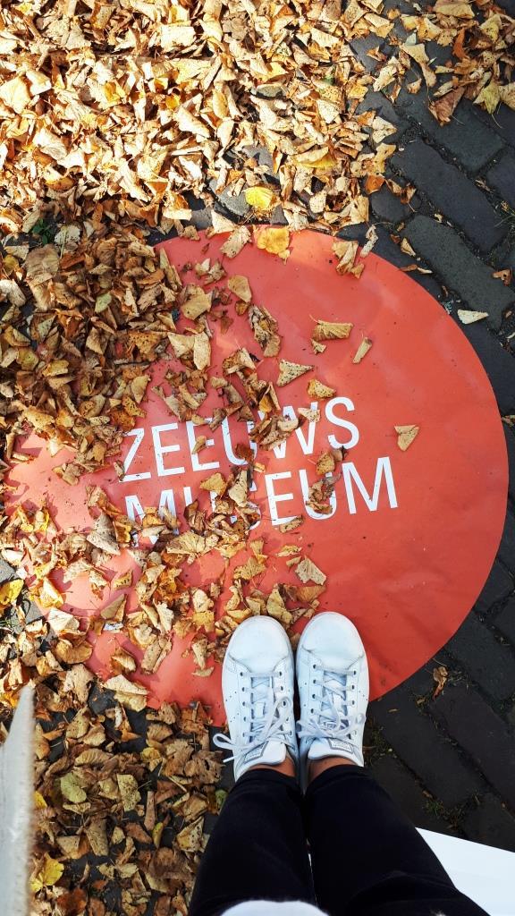 Herbst Blätter Zeeuws Museum
