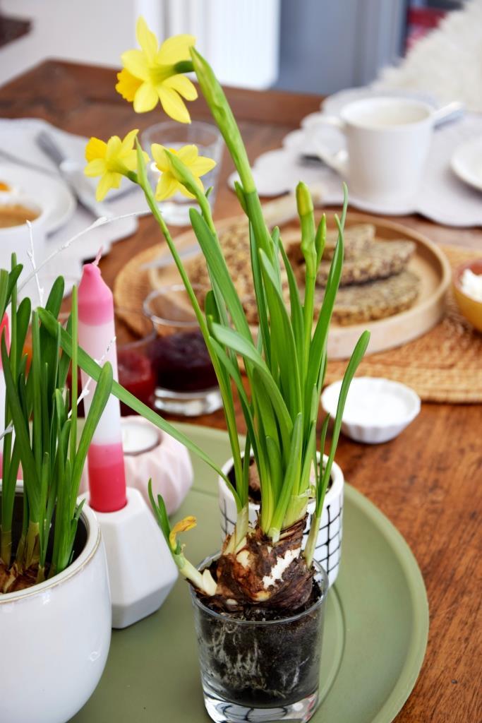 Frühstückstisch Frühling Brot