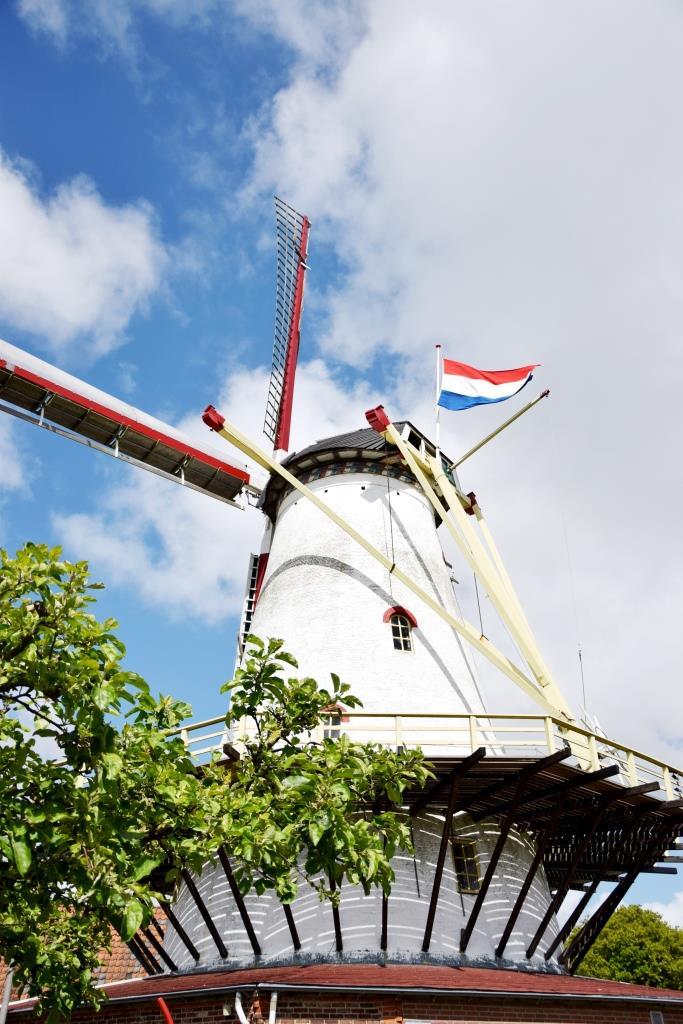 Windmühle mit Niederlande Flagge in Zeeland