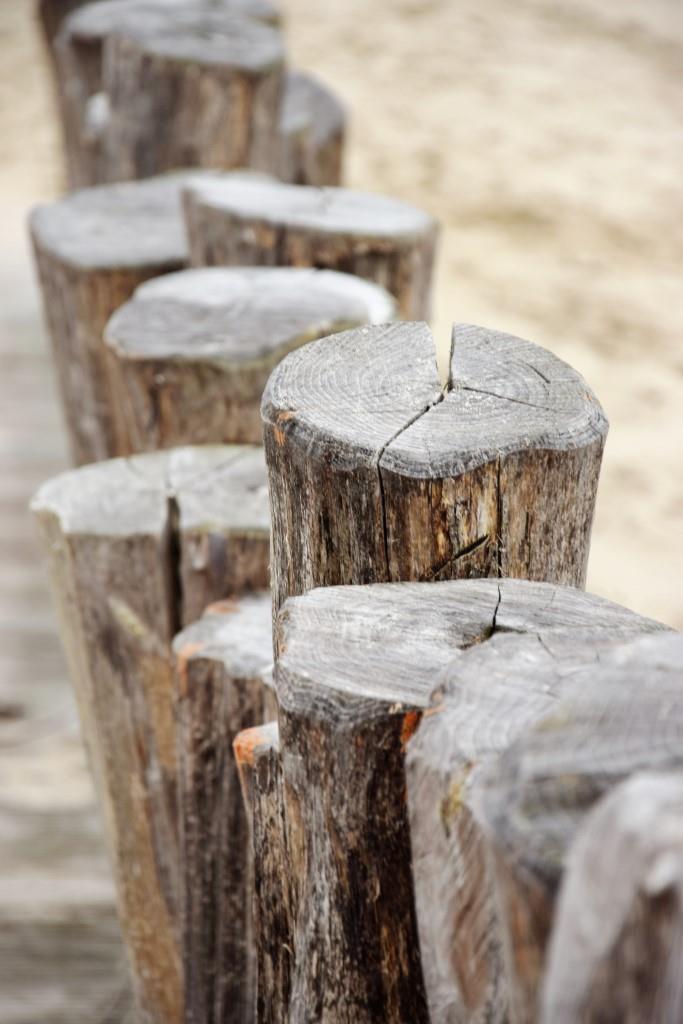 Hölzerne Buhnen am Strand von Zeeland