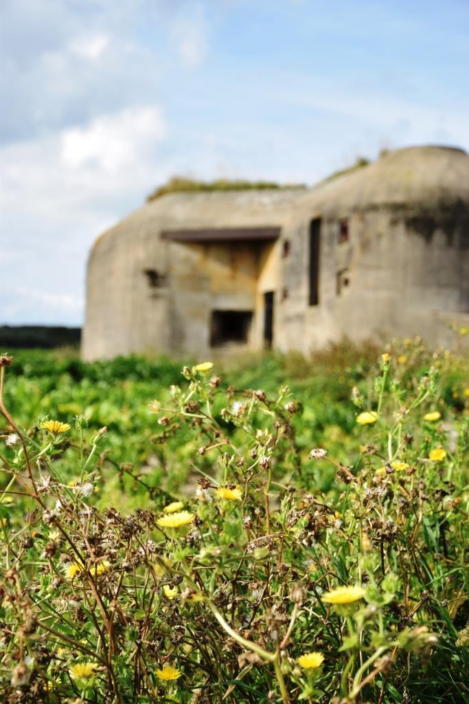 Die Bunker in Zeeland - stille Zeugen einer schlimmen Zeit
