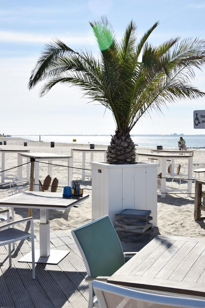 Pier 7 Restaurant am Strand von Vlissingen