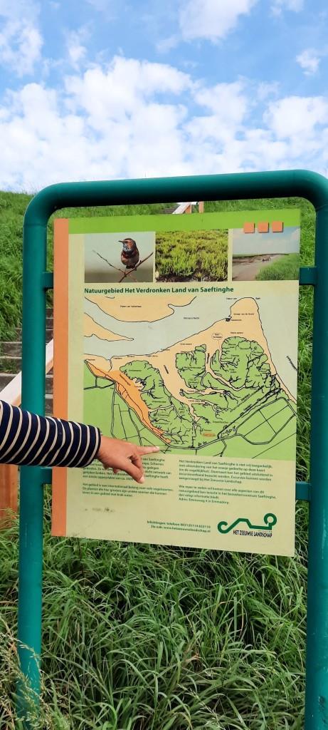 Unterwegs im Süden von Zeeland - im Naturschutzgebiet Verdronken Land van Saeftinghe / Versunkenes Land